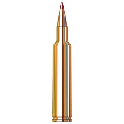 Hornady Ammunition 257 WBY MAG 110 Grn ELD-X (20 Pack) (HORN-81364)