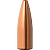 Barnes Varminator 20 CAL (.204) 32Grn HPFB (100 Pack) (BA30092)